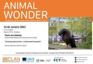 13-01-2021 Cartaz Animal Wonder