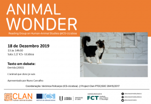 18-12-19 Cartaz Animal Wonder