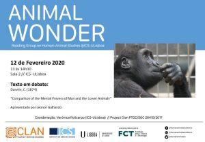 12-02-2020 Cartaz Animal Wonder