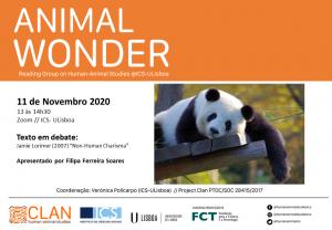 11-11-20 Cartaz Animal Wonder