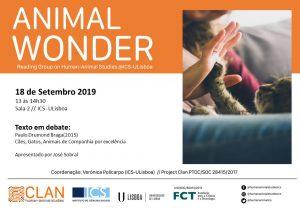 18-09-19 Cartaz Animal Wonder