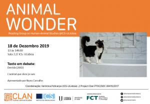 18-12-19 Cartaz Animal Wonder